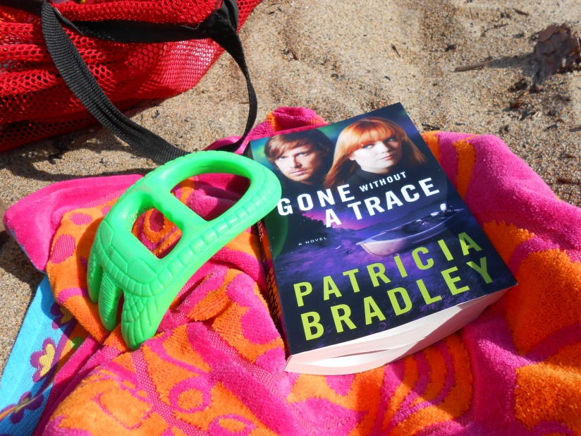 Gone Without a Trace:  A BookReview