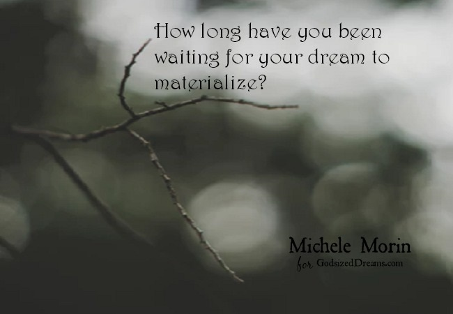 "Dreams with a long shelf life can light a spark in middle age, or . . . they can become the seedbed for bitterness and regret. Sarah (Old Testament wife of Abraham and matriarch of the Hebrews 11 ""faith chapter"") knew well the taste of disappointment and frustrated dreams."
