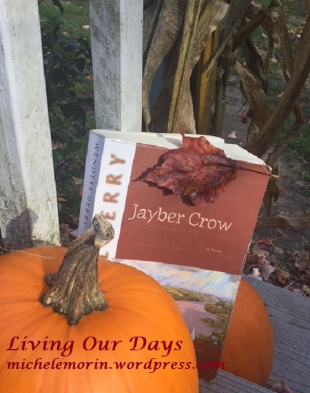 Pulled Away By Expectation:  Jayber Crow Discussion Group (10)