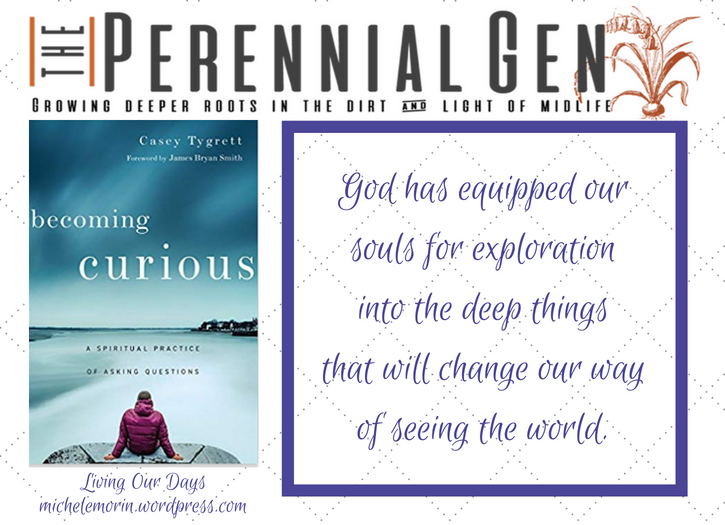 Becoming Curious: God has equipped our souls for exploration.