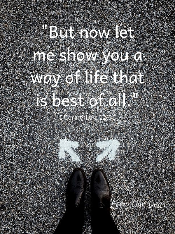 But now let me show you a way of life that is best of all. (I Corinthians 12:31)