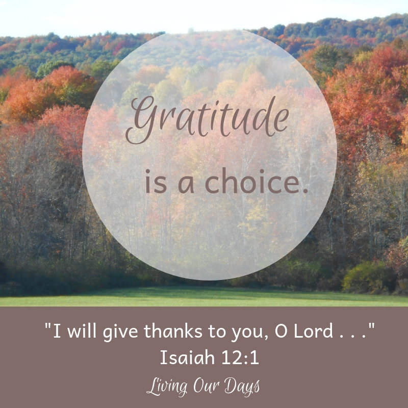 Gratitude is a choice!