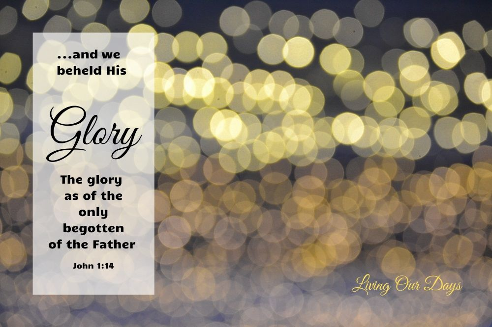 And we beheld his glory, the glory as of the only begotten of the Father (John 1:14)