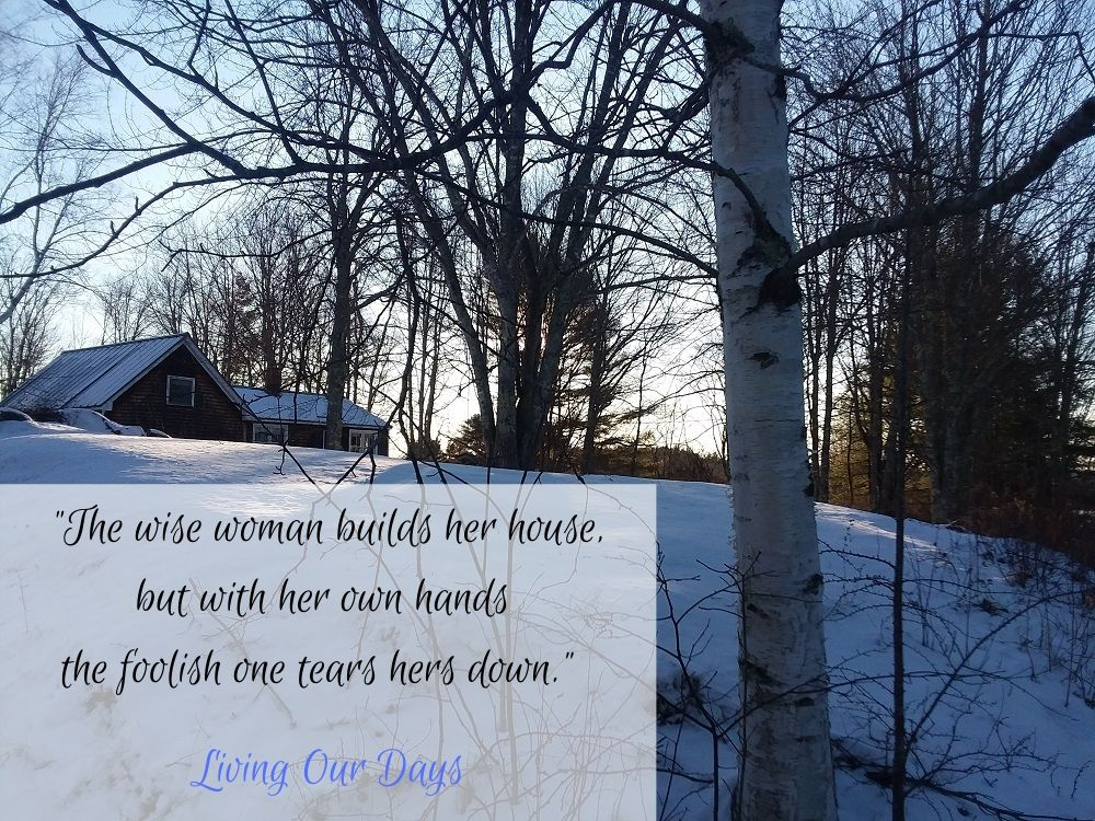 """The wise woman builds her house, but with her own hands the foolish one tears hers down."""" (Proverbs 14:1)"""