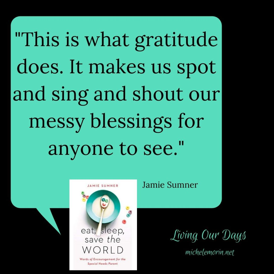 """This is what gratitude does. It makes us spot and sing and shout our messy blessings for anyone to see."" ~Jamie Sumner"