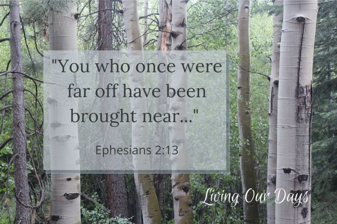 """You who once were far off have been brought near..."" (Ephesians 2:13)"