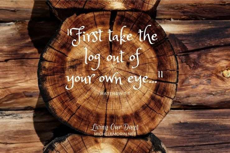 """First take the log out of your own eye..."" Matthew 7:5"