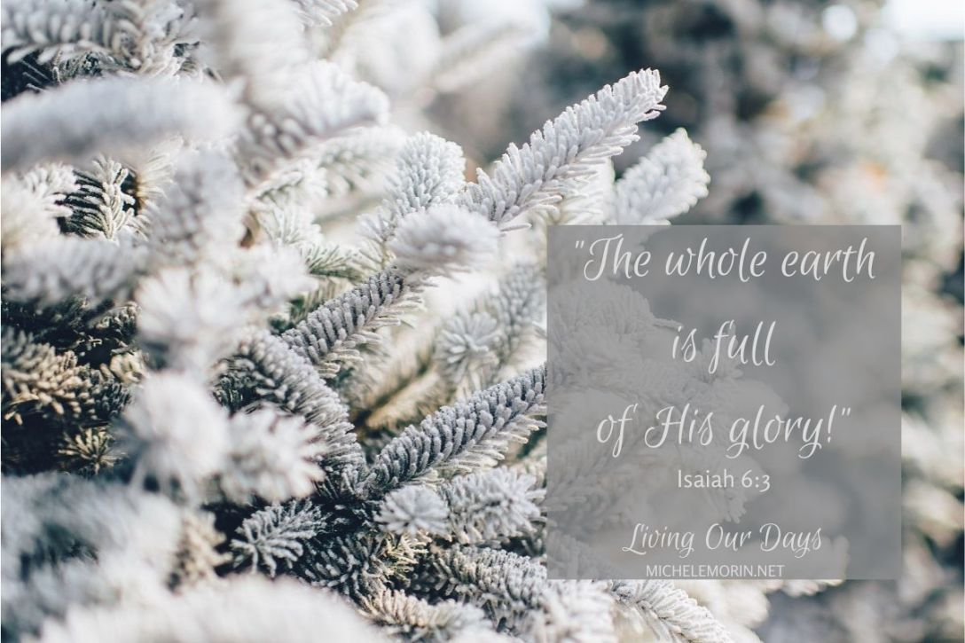 The whole earth is full of His glory!