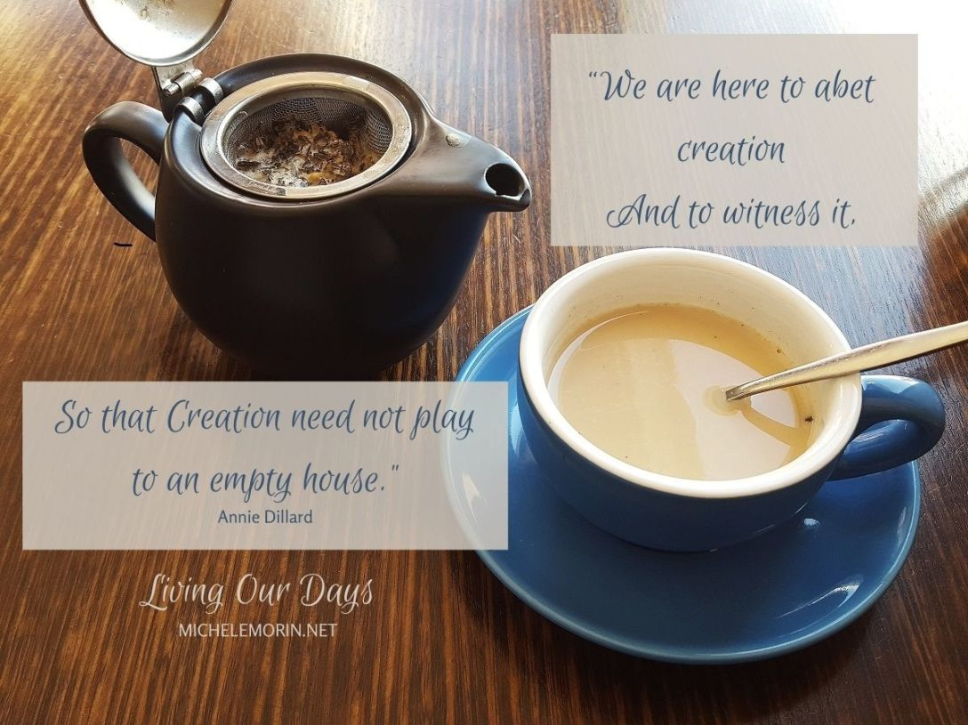 """We are here to abet creation And to witness it..., So that Creation need not play to an empty house."""