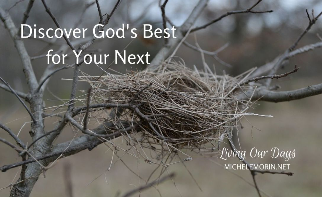 Empty Nest: Discover God's Best for Your Next