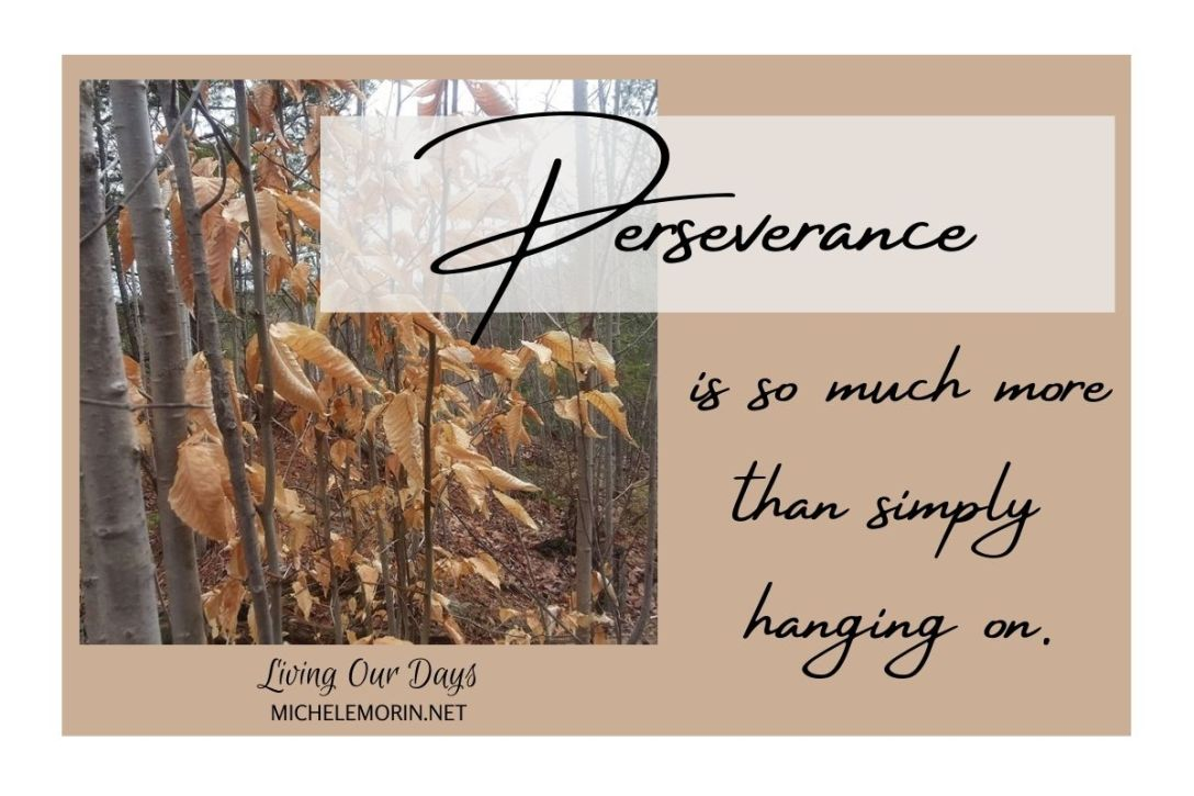 Perseverance is so much more than simply hanging on.